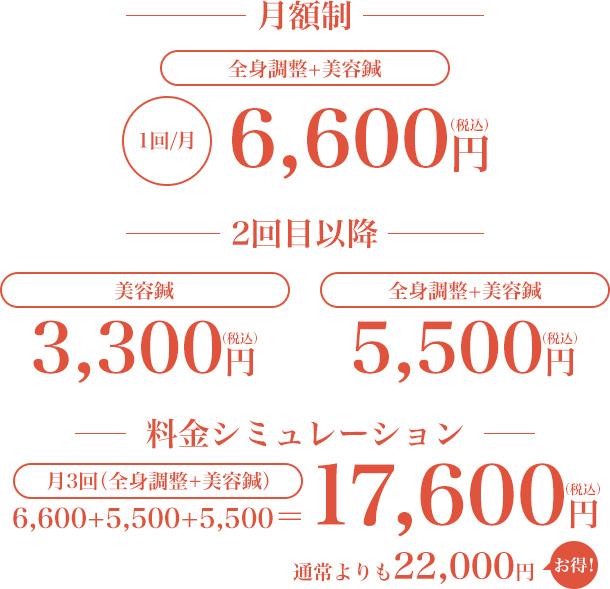 月額制料金表
